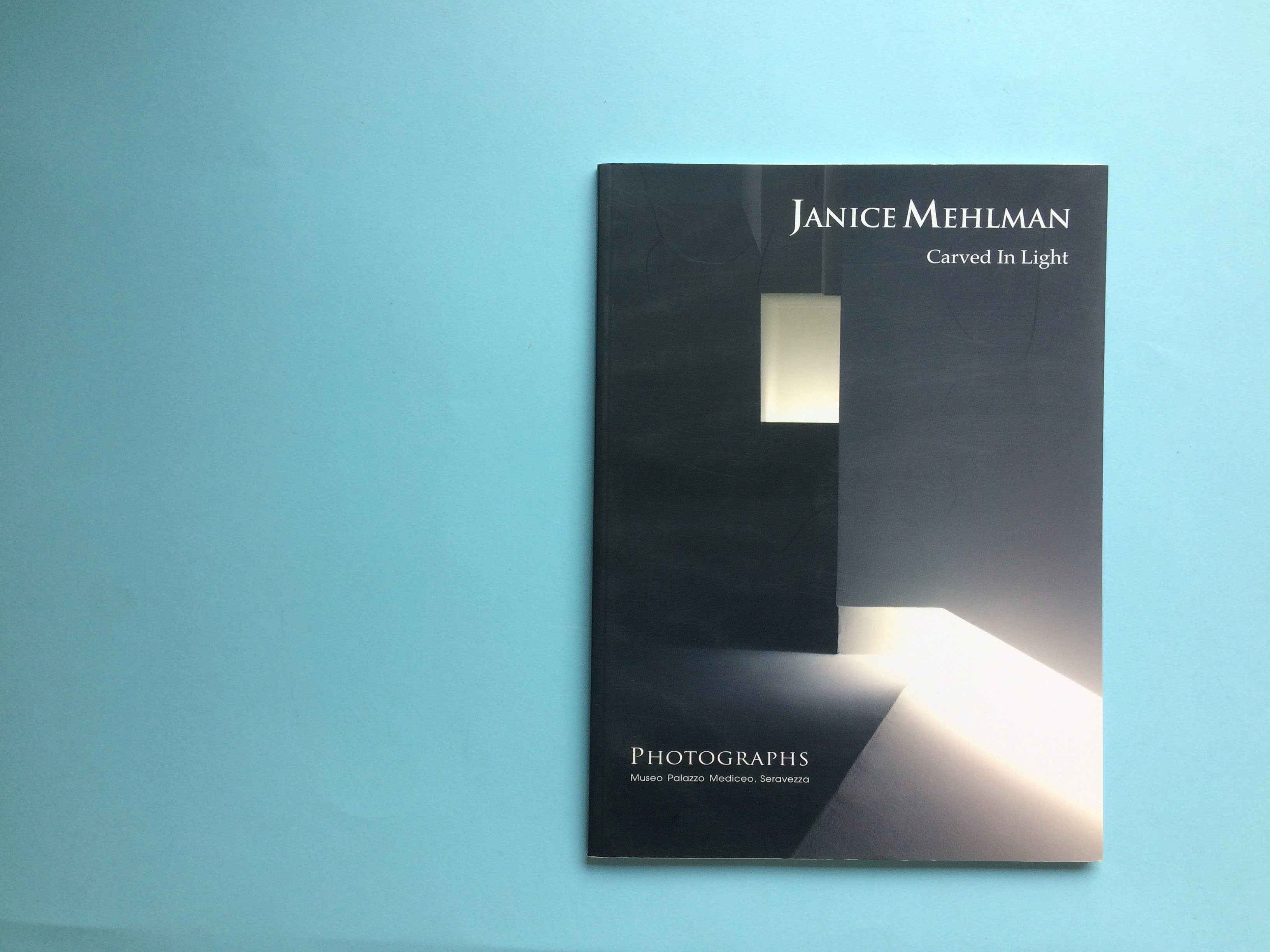 CARVED IN LIGHT / JANICE MEHLMAN